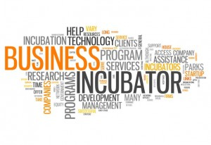 What-is-business-incubation3-300x206